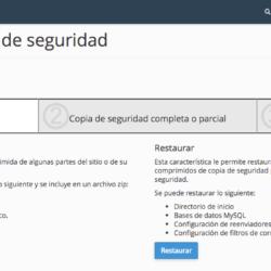 Crear copias de seguridad con el hosting de Raiola Networks